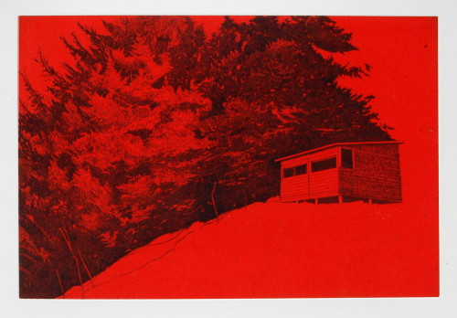 Bird Hide (Red)