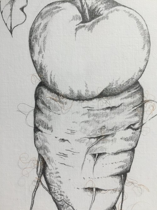 Hairy Arsenip (detail)