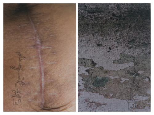 Scar Series, Puebla II