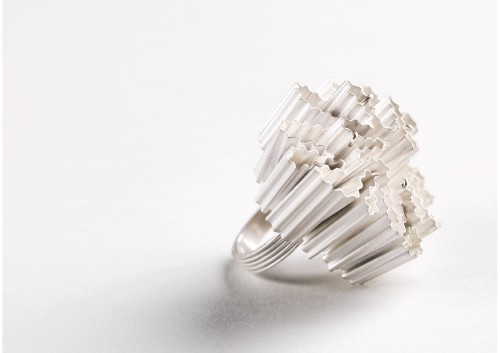 Silver coral ring - image by Shannon Tofts