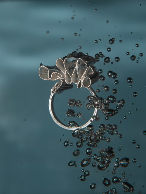 Silver ring - image by Kyle Meadows