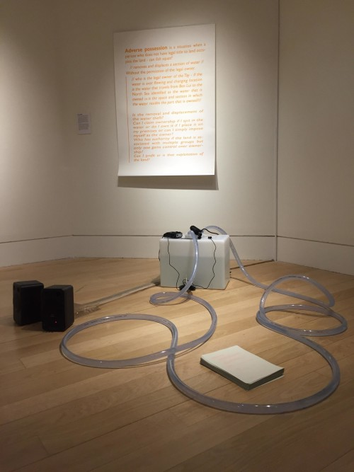 Can Fish Squat? Installation and accompanying text