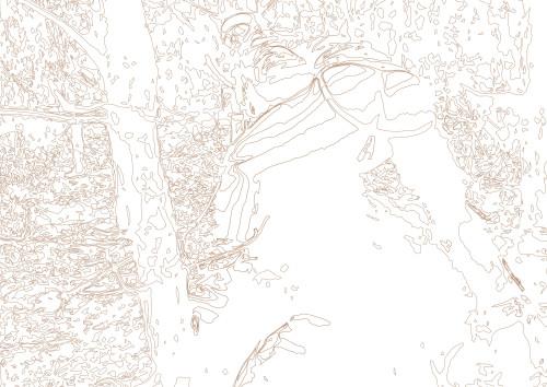 Feral Creatures 5 (line)