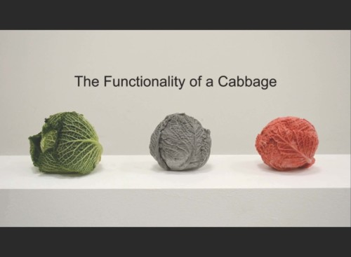 The Functionality of a Cabbage