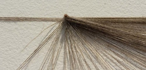 Strands of Thought (detail 2)