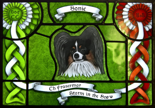Sonic - Etched and painted stained glass