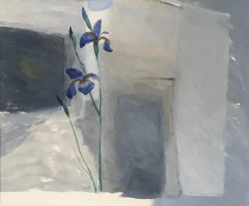 'Iris