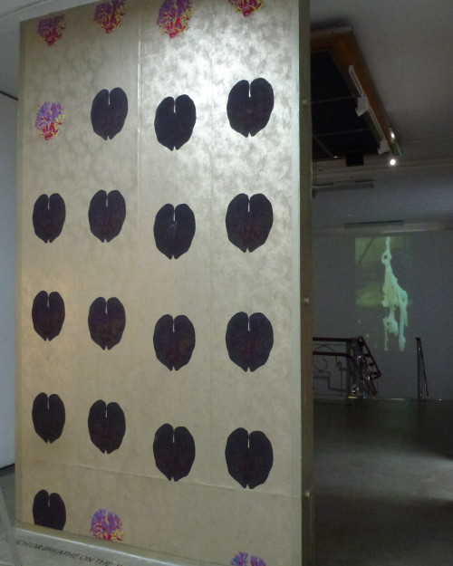 Thermachromic Wall Instalation
