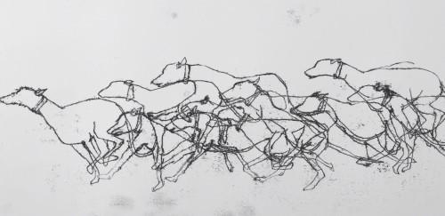 canine kinetics