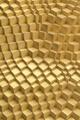 Golden Surface
