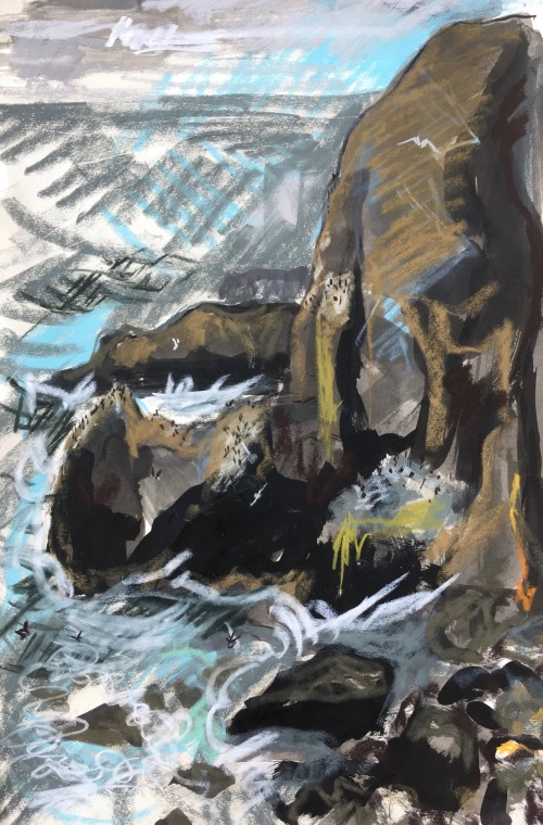 Cliffs with Nesitng Guillemots and large swell