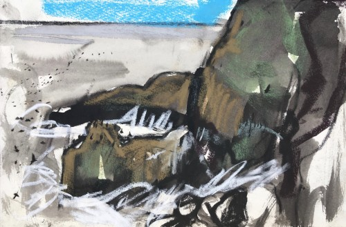 Crashing waves with kittiwake and guillemots, St Abb's Head