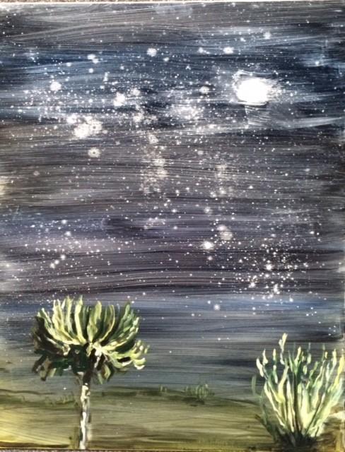 Night sky, Turkana with Euphorbia trees
