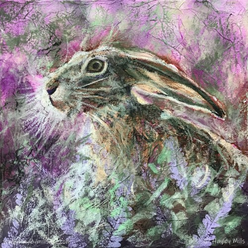 Hare in the Heather