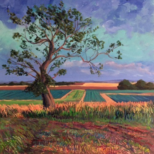 'Tree of Hope, Fife' - 60x60cm - Oil paint on canvas