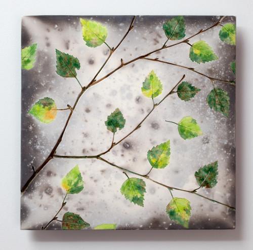 Spring Birch - Raku ceramic wall piece 2020